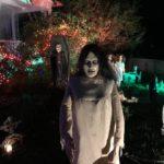 Halloween Decorated Yard