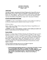 Village Board Minutes: June 17, 2019