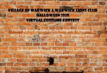 Virtual Costume Contest